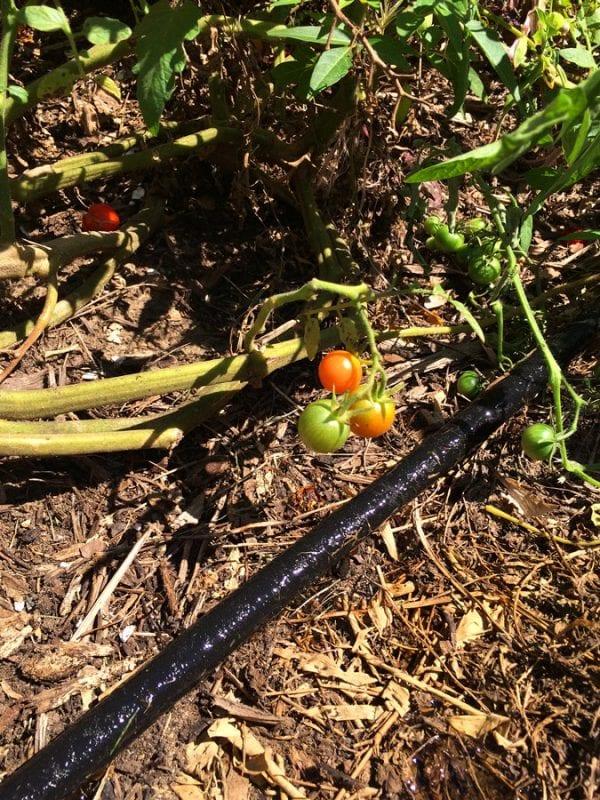 Garden Soaker Hose Kit